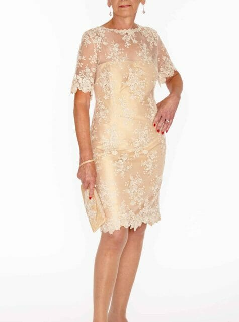 Francine French lace dress  -