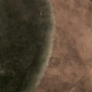 dark-brownsuede shearling-streve-design